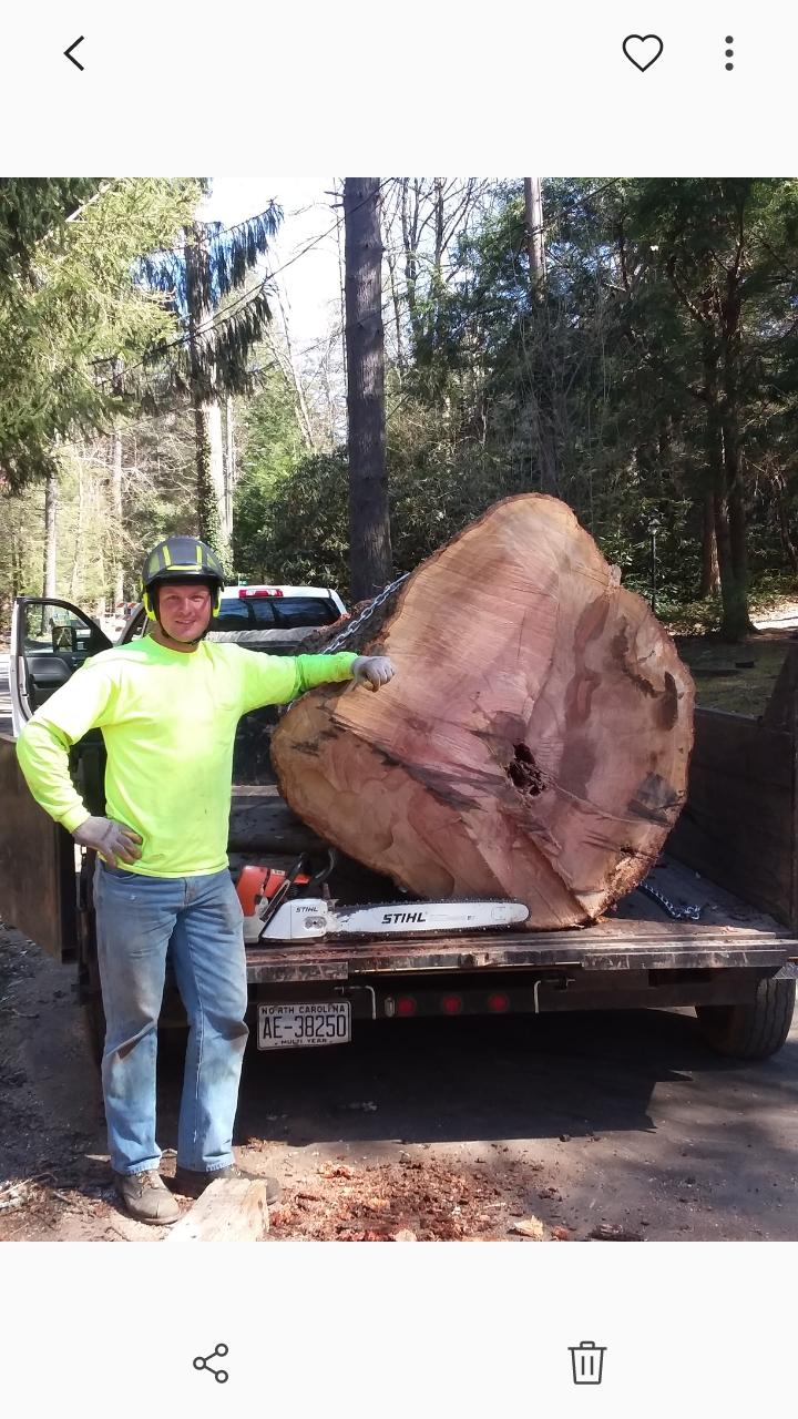 4 Seasons Tree Care, Inc