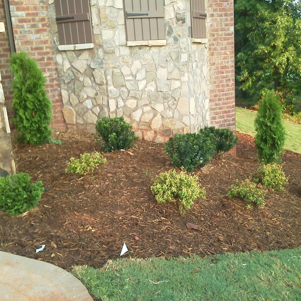 Advance Lawn Care LLC