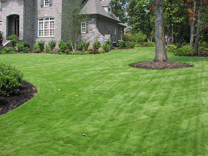 Greenville Lawn & Landscape