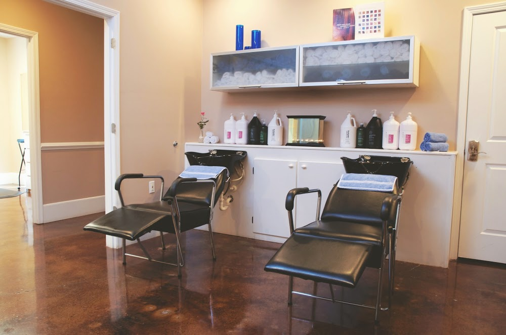 Shampoo Hair Salon