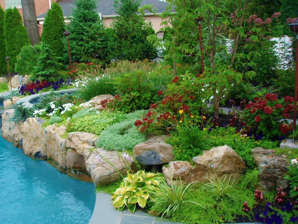 Solomon's Landscape & Design,LLC