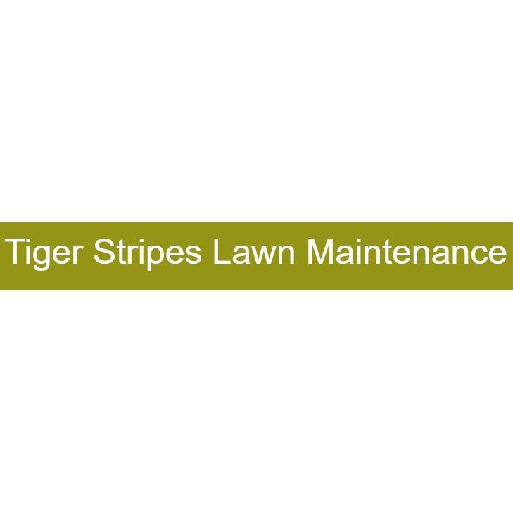 Tiger Stripes Lawn Maintenance
